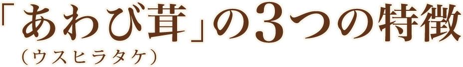 「あわび茸」の3つの特徴(ウスヒラタケ)